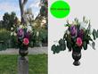 Photo Editing Background remove,retouching,color corecction