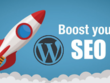 Wordpress Website SEO Boost & Audit