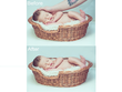 Professionally retouch your 2 images