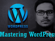 Make your dream wordpress website professionally