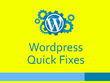 Quick fix your any Wordpress Bug, web design and web development