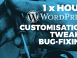 Provide one hour of WordPress customisation, tweaks or bug-fixes