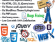 Fix and customize Wprdpress/Js/php/css/mysql error  in 1Hr.