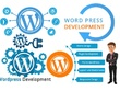 Design Responsive & SEO friendly WordPress website