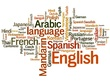 Translate 1k Words  From Any Language To English Professionally