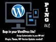 Provide Bug Fixing and Customization to your WordPress Website