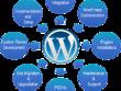 Design Full Website, WordPress Theme Customize, Website Redesign