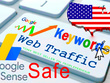 ORGANIC WEBSITE TRAFFIC FROM USA ADSENSE SAFE