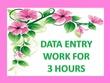 Do data entry work for 3 hours