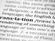 Translate 500 words from English to Portuguese or Spanish
