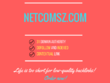 Add a guest post on netcomsz.com, DA 31
