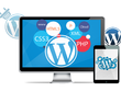 Provide 1 Hour Customisation To WordPress Website / Theme