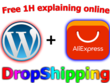 Create Automated AliExpress Drop-shipping Store As You Want