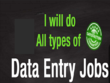 Do any type of data entry for 2 hours