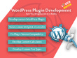 Develope Wordpress Plugin As Required