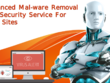 Advanced Malware Removal and Security Service For Web Sites