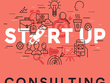 Provide expert consulting on your startup