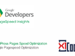WordPress Pages Speed Optimization -  Google Pagespeed