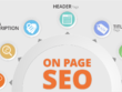 Do Complete On Page SEO Audit and Analysis
