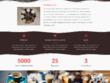 Develop customized Wordpress website