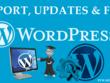 Provide 30 mins of wordpress support, maintenance and updates