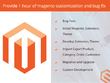 Provide 1 hour  magento customization and bug fix