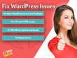 Fix any issue in WordPress Website