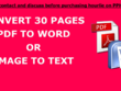 Convert thirty pages PDF to Word/Image to Text