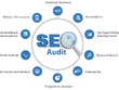 Website Audit And Competitor Analysis