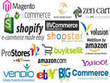 Upload 100 products on any E-commerce or Online Store