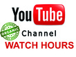 Add 1000 Watch Hours YouTube Worldwide Real Non-Drop