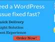 Get any WordPress Issue/Problem Solved