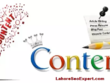 Write you outstanding content writing with unlimited revision.