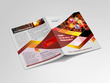 Design a Professional Flyer And Brochure In 10 Hrs