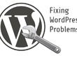 1 hour of Updates/Fixes/Customization for WordPress Website
