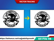 Professionally convert your logo to a high resolution vector