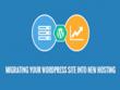 WordPress Migration, Website Transfer, Cloning, Change Domain