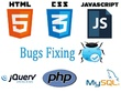 Do any PHP related coding task per hourly