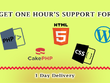 Provide  Wordpress/PHP/Cake PHP/HTML/CSS for one hour