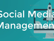 5 Social Media Pages Manage For 1 Month, Professional Service