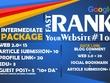 INTERMEDIATE PACKAGE SEO Package To Improve Website Ranking