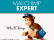 Add MailChimp POP-UP, Sign-Up Form to your WordPress- BEST DEAL!