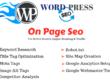 Do google friendly on page seo optimization