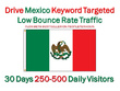 Drive Mexico Keyword Targeted Low Bounce Rate Traffic