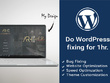 Do any work on your WordPress website for 1 hr.