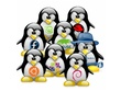 Support for Linux Distro Development