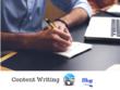 Write unique articles for your blogs 500-1000 words