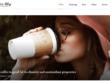 Customization or Setup your premium WordPress theme