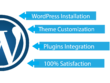 Provide  you one hour wordpress website customization