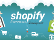 Shopify Store Development And Manage